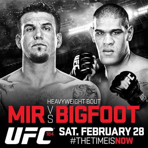 UFC Fight Night 61 Poster